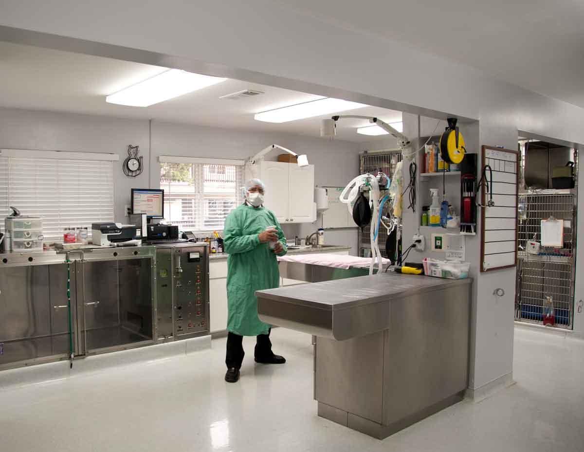 Veterinary Surgery Autopsy Equipment Mortuary equipment Funeral
