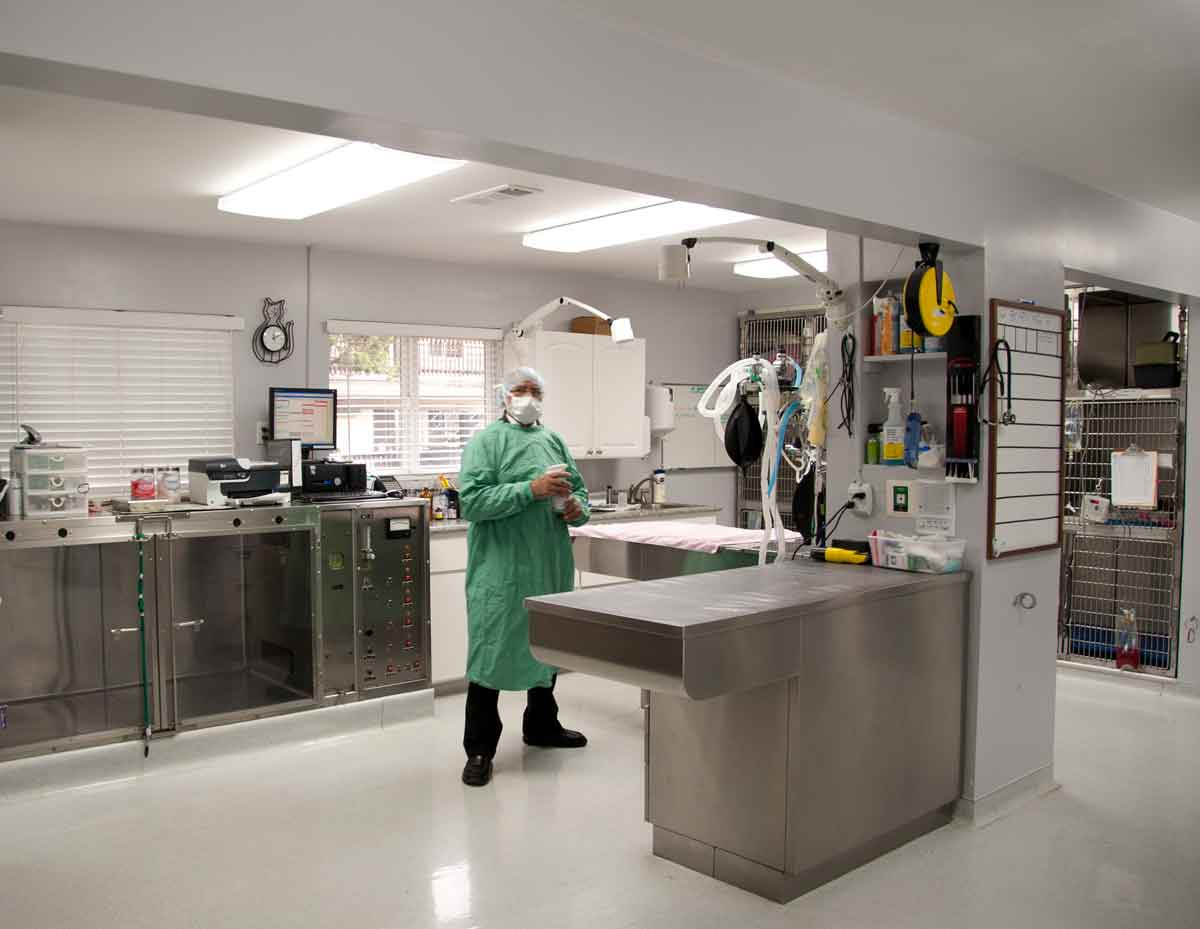 Wonderful Embalming Room Design Part - 13: Veterinary Surgery